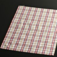 b5106-20-1 44.5×34.0赤青マドラスチェックランチョン