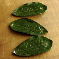 s1589-45-5 17.5x9.3x1.5緑葉形銘々皿